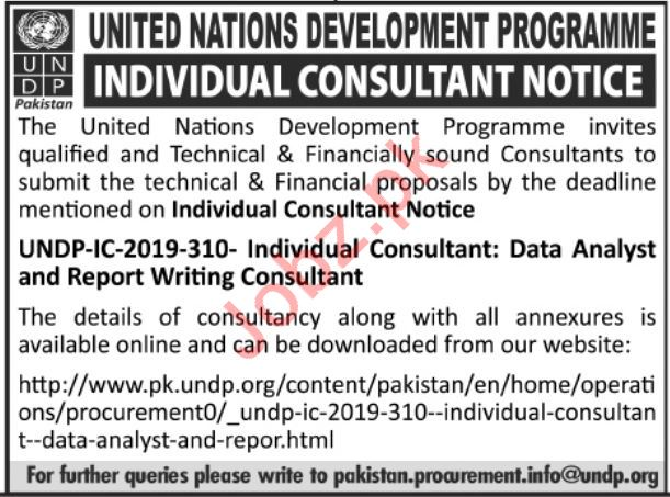 United Nations Development Programme UNDP NGO Jobs 2019