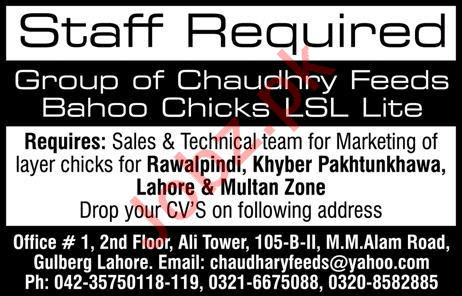 Chaudhry Feeds Mills Private Limited Jobs 2019