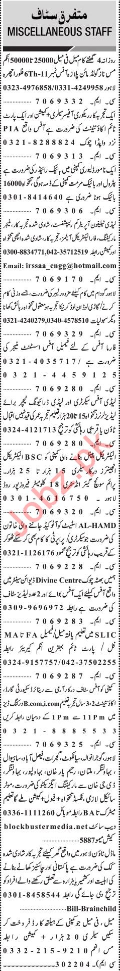 Jang Sunday Classified Ads 28th July 2019 for Multiple Staff