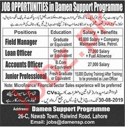Damen Support Programme NGO Jobs 2019
