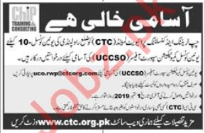 CHIP Training & Consulting Pvt Ltd NGO Job in Rawalpindi