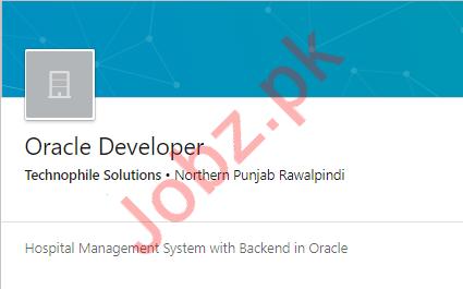 Oracle Developer Job 2019 in Rawalpindi