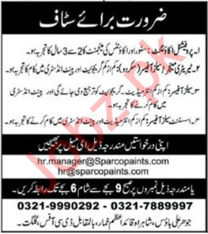 Accountant Sales Officer Jobs in Gilgit