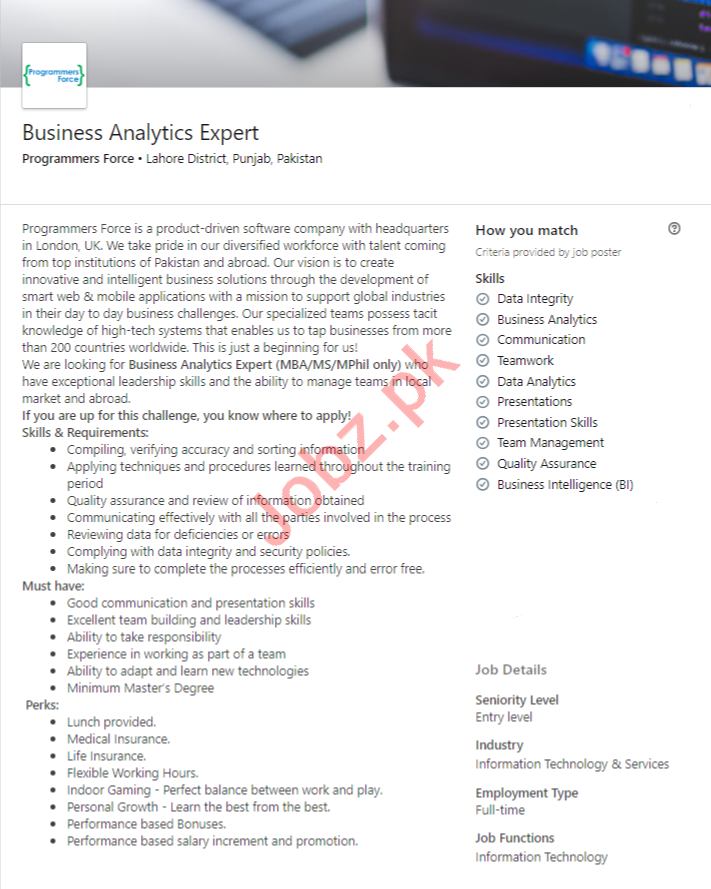 Programmers Force Lahore Jobs for Business Analytics Expert