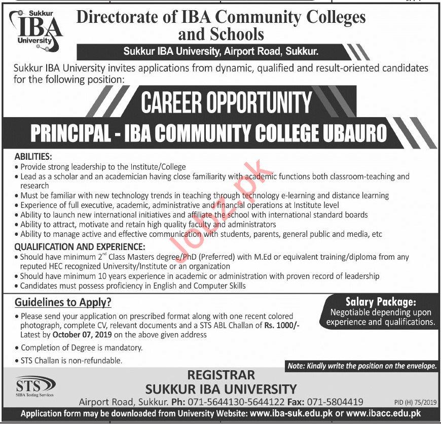 Directorate of IBA Community Colleges & Schools Jobs 2019