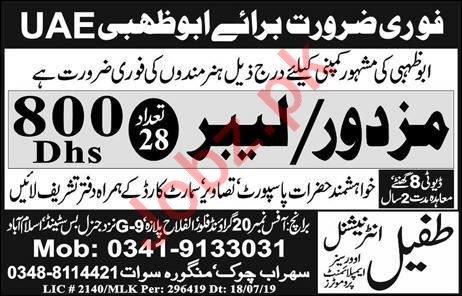 Labour Jobs Career Opportunity