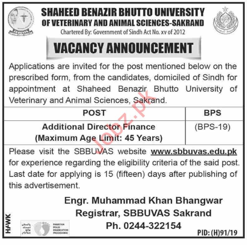Additional Director Finance Job 2019 in Sakrand