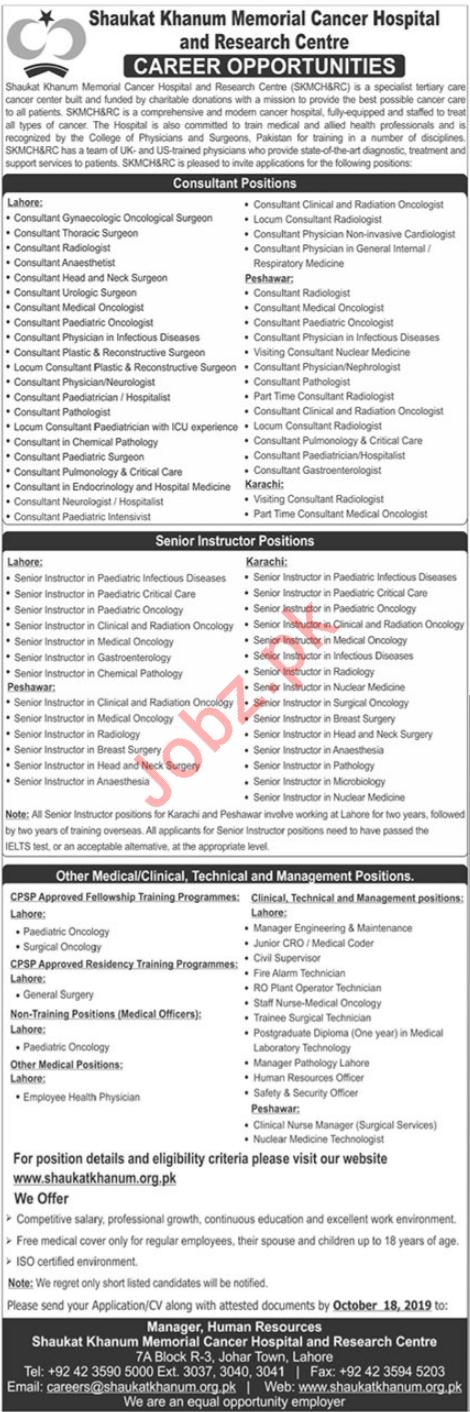 Consultants, Instructors & Medical Staff Jobs 2019