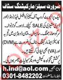 Sales & Marketing Staff Jobs