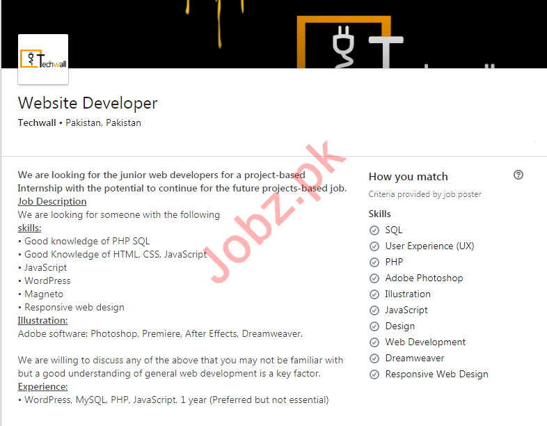 TechWall Solutions Job For Website Developer in Karachi