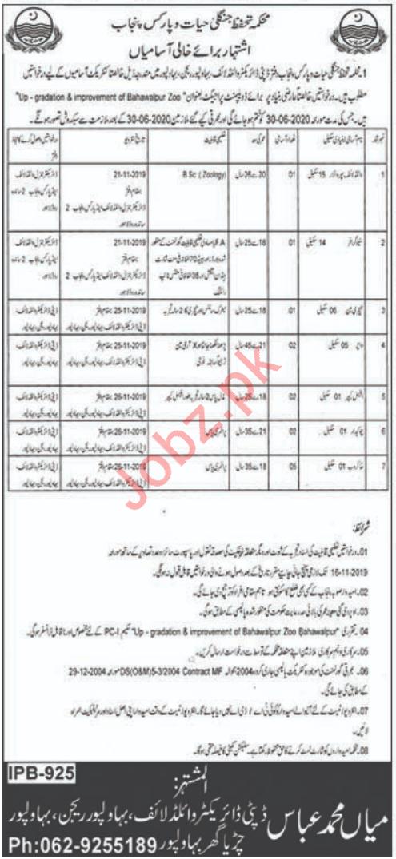 Punjab Wildlife & Parks Department Jobs in Bahawalpur