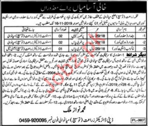 Agriculture Department Jobs 2019 in Mianwali