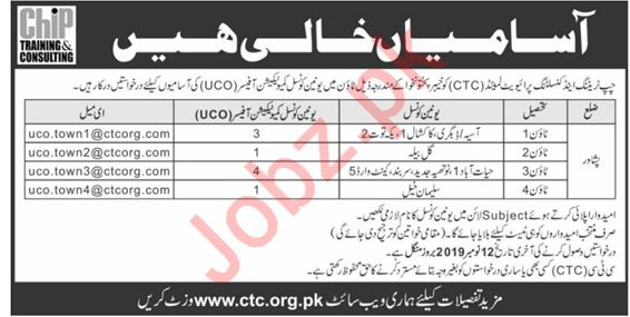 Chip Training & Consulting Limited NGO Jobs in Peshawar