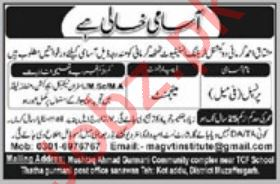 Mushtaq Ahmed Gurmani Vocational Training Institute Job 2019