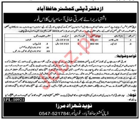 Deputy Commissioner Office Jobs Naib Qasid & LTV Drivers