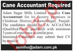 Cane Accountant Job 2019 in Bahawalnagar