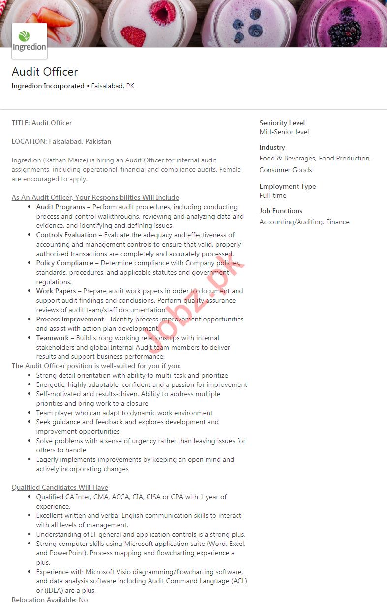 Audit Officer Job 2019 in Faisalabad