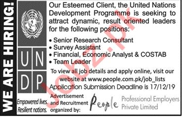 Survey Assistant & Senior Research Consultant UNDP Jobs 2019
