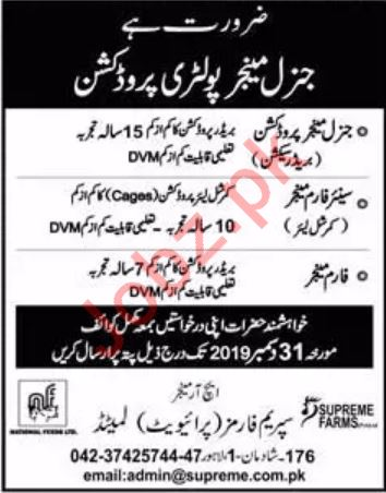 Management Staff Jobs in Supreme Farms Private Limited