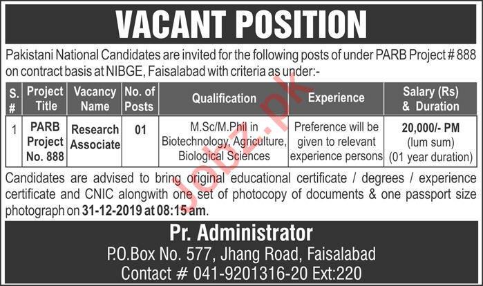 Research Associate Job 2020 in Faisalabad
