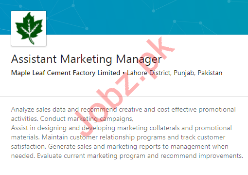 Assistant Marketing Manager Job 2020 in Lahore