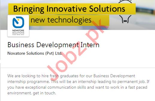 Novatore Solutions Lahore Jobs 2020 for Business Development