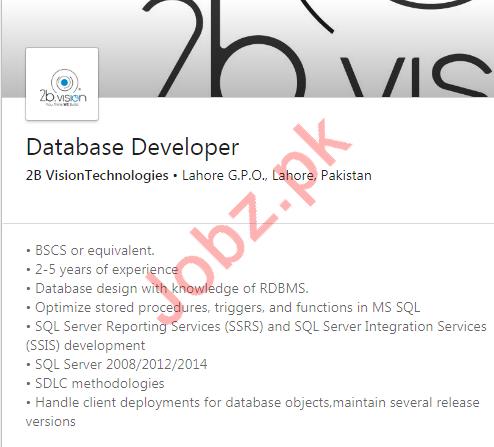 Database Developer Jobs in 2B Vision Technologies