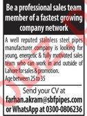 SBF Stainless Jobs For Sales Staff in Lahore