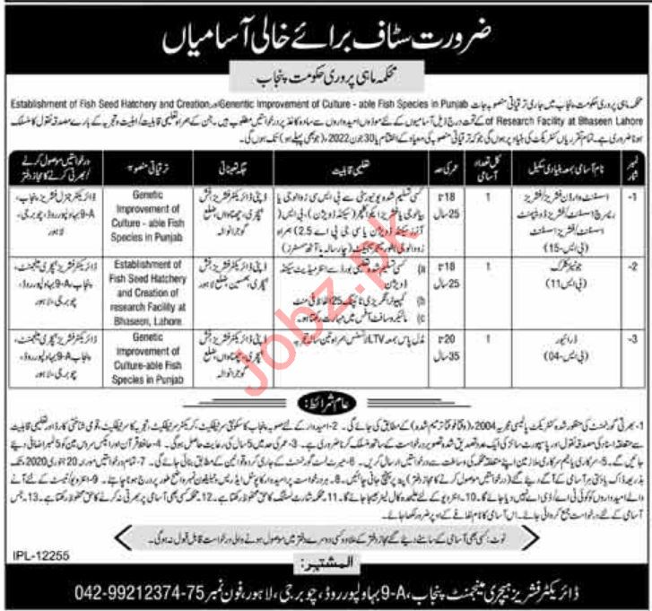 Fisheries Department Punjab Jobs 2020 for Clerks & Assistant