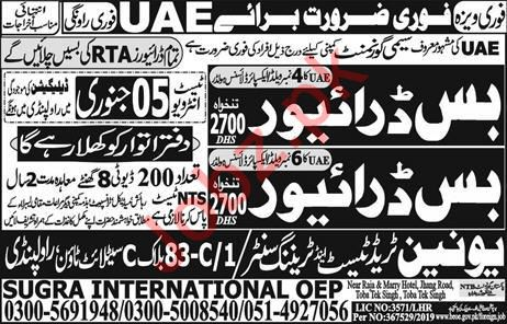 Road & Transport Authority RTA Jobs For HTV Bus Drivers