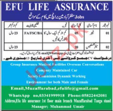 EFU Life Assurance Muzaffarabad Jobs 2020 for Managers