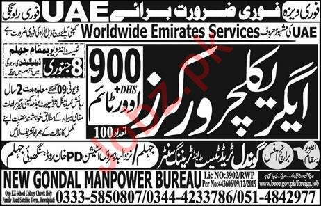 Worldwide Emirates Services Company Jobs In UAE