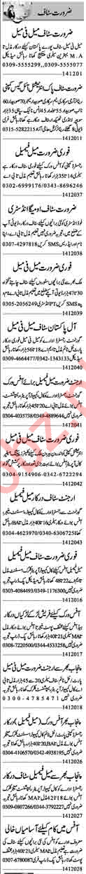 Computer Operator Assistant Manager Jobs in Lahore