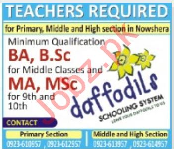 Daffodils Middle & High School Jobs 2020 in KPK