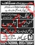 Silk Cable & Company Marketing & Office Staff Jobs 2020