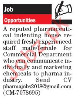 Pharmaceutical Staff Jobs in Pharmaceutical Company
