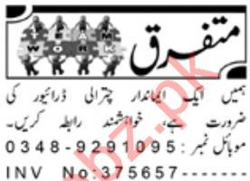 Driving Staff Jobs 2020 In Chitral KPK