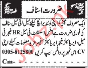 Daily Jang Newspaper Classified Ads 2020 In Quetta