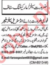 Daily Nawaiwaqt Sales & Marketing Staff Jobs 2020 in Lahore