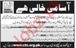 Chip Training & Consulting Pvt Ltd NGO Jobs 2020