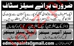 Paint Manufacturing Company Jobs 2020 in Karachi