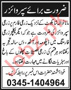 Agriculture Supervisor Jobs 2020 in Faisalabad