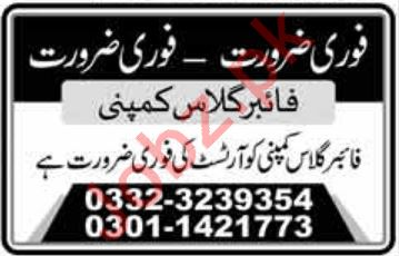 Fiber Glass Company Job 2020 For Artist in Lahore