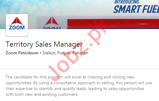 Territory Sales Manager Job 2020 in Sialkot