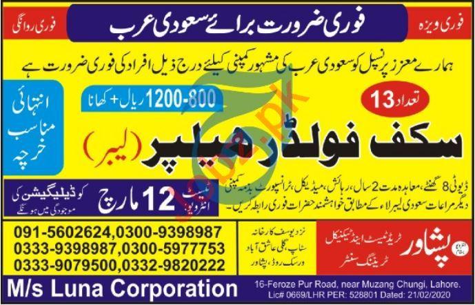Peshawar Trade Test & Technical Training Center Jobs 2020