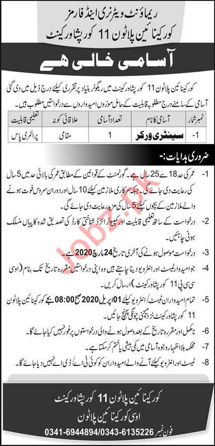 Sanitary Worker Jobs in  Remount Veterinary & Farms