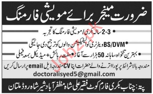 Chenab Bakery Farm Jobs 2020 in Multan