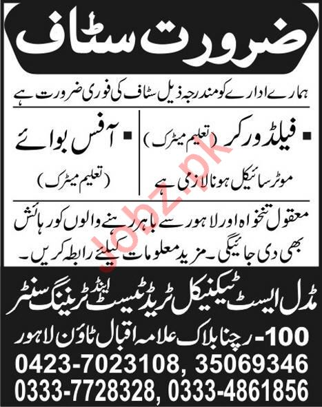 Field Workers & Office Boy Jobs 2020 in Lahore