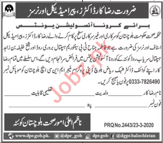 Corona Isolation Unit Balochistan Jobs for Volunteer Staff