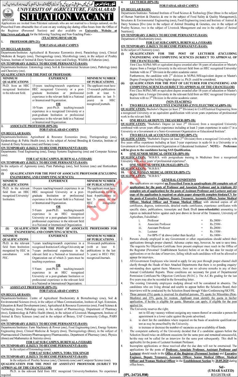 University of Agriculture Faisalabad UAF Teaching Staff Jobs